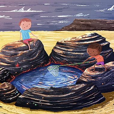 Rock Pool Illustration