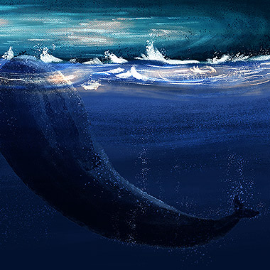 Whale On A Stormy Evening